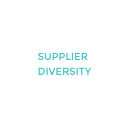 VMT-CONSULTING-SPEAKER-TOPICS-SUPPLIER-DIVERSITY